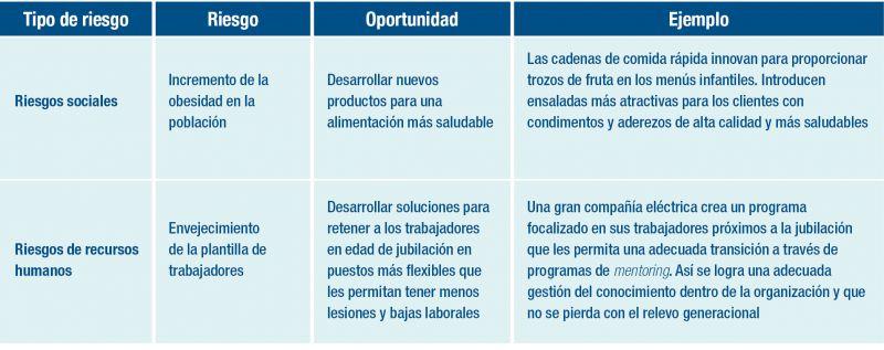 Cuadro de determinacion de riesgos y oportunidades