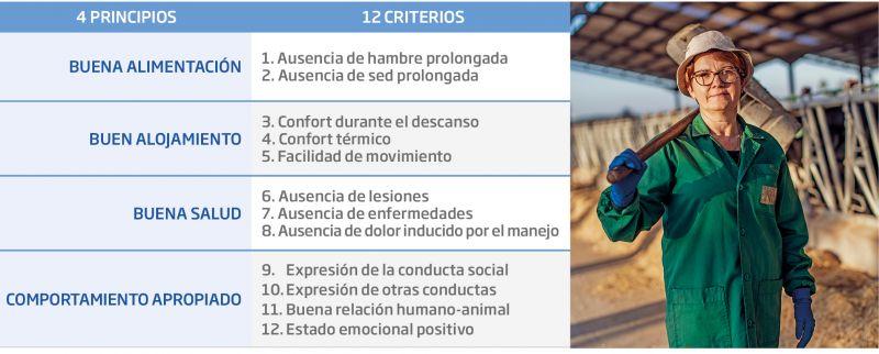 Tabla 2. Principios y criterios del Modelo Welfare Quality