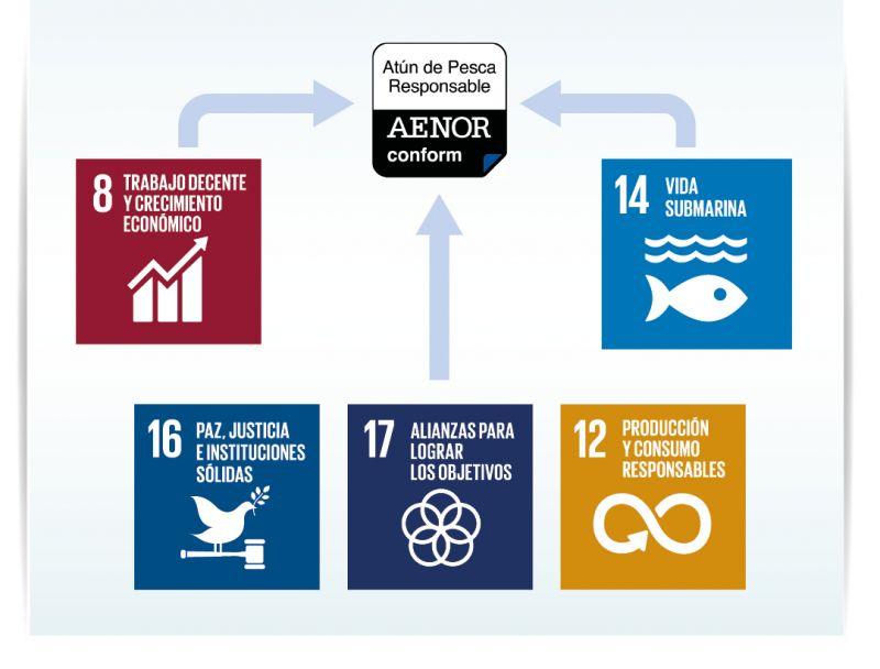 La certificación APR de AENOR ayuda a cumplir los Objetivos de Desarrollo Sostenible de la ONU: ODS 8, 12, 14, 16 y 17.