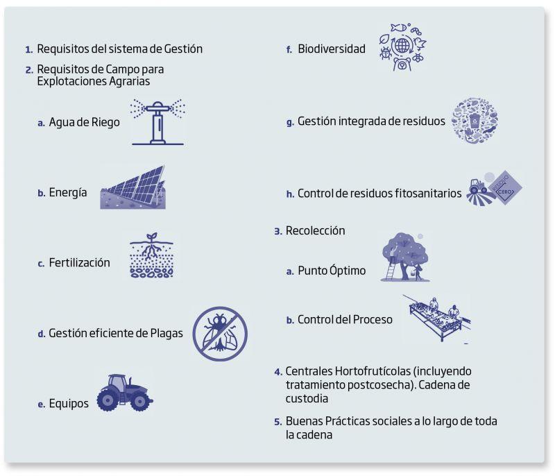Requisitos del esquema de certificación AENOR de Producción de Cultivo Sostenible